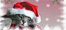 Новогодние каникулы и Рождество